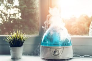 Humidifier Maintenance Checklist